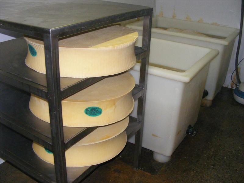 Exploitation laitière Savoie (73) Dscf0725