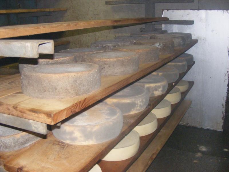 Exploitation laitière Savoie (73) Dscf0728