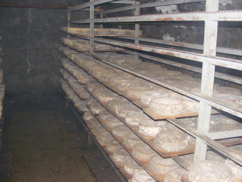 Exploitation laitière Savoie (73) Dscf0729