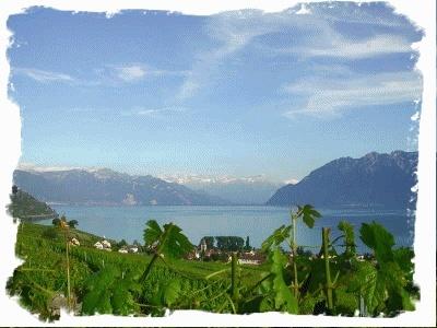 Concours du plus beau paysage !! Cbhj1e10