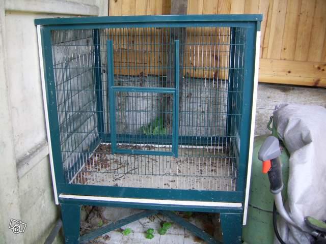 ma nouvelle cage ce soir !!! 95782012