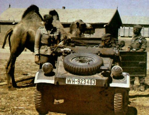 Kubelwagen(German) Kubelc10