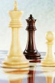 قسم  الشطرنج ومسائله