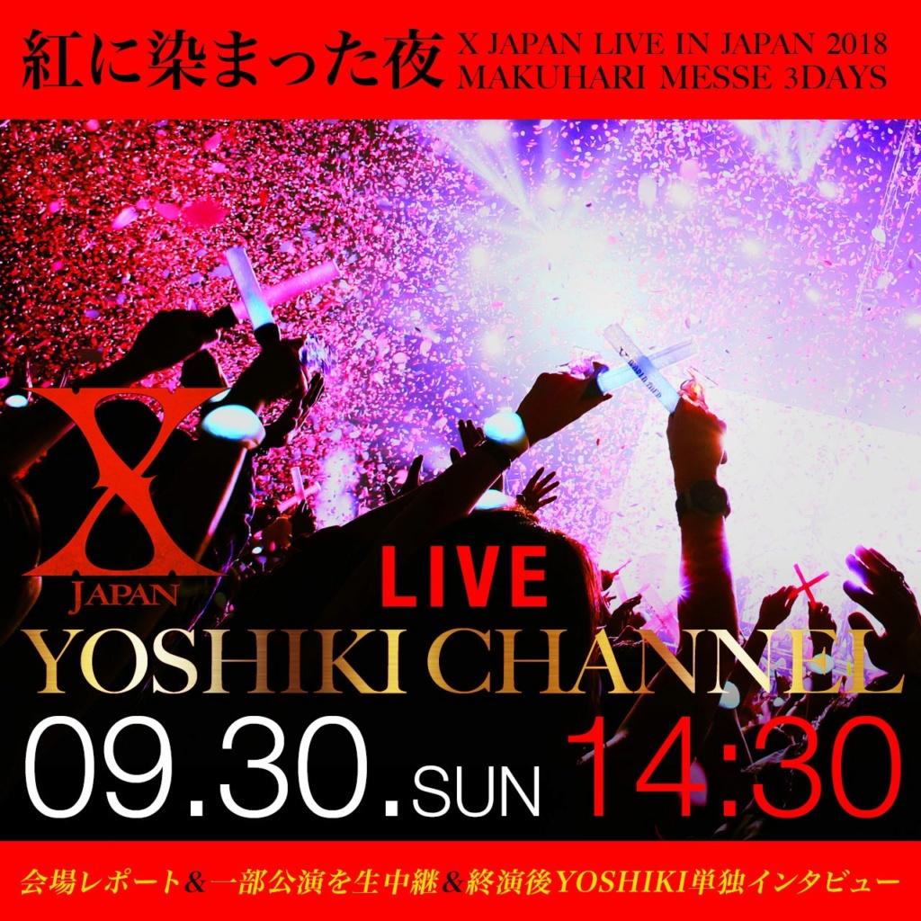 - LIVE IN JAPAN 2018 ~Kurenai ni Somatta Yoru~ @Makuhari Messe [09.30] Img_2015