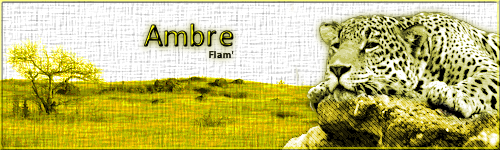 Ambre Asheart Sign_a66