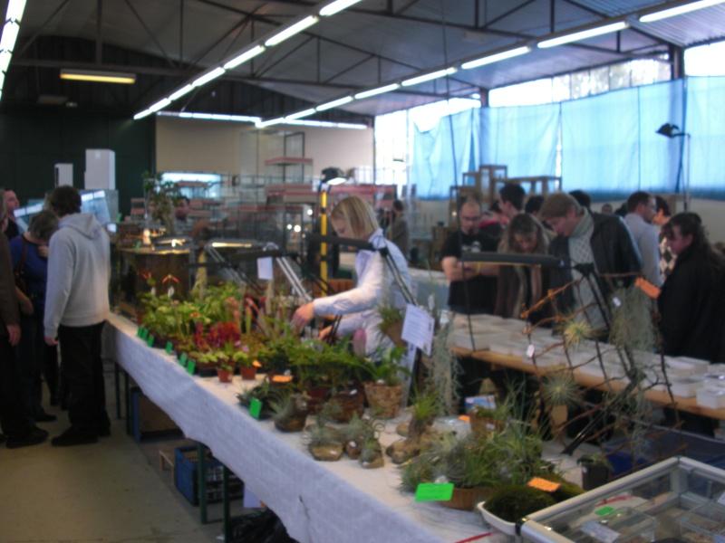 photo de la bourse d'Illkirch Cimg1217