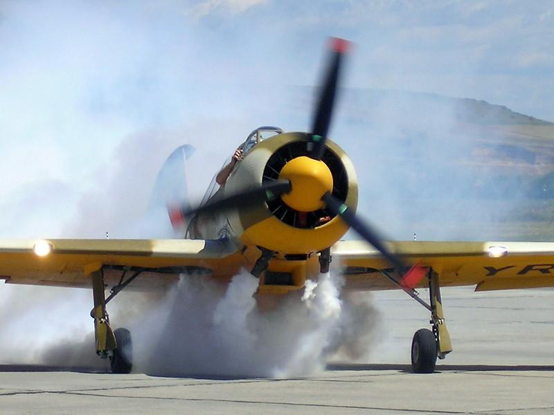 Yak-52TW P7070011
