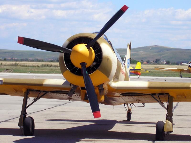 Yak-52TW P7070012