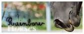Academie Horses Sans_t11