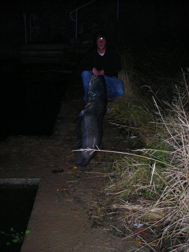 mes dernier fishs Dscn2311