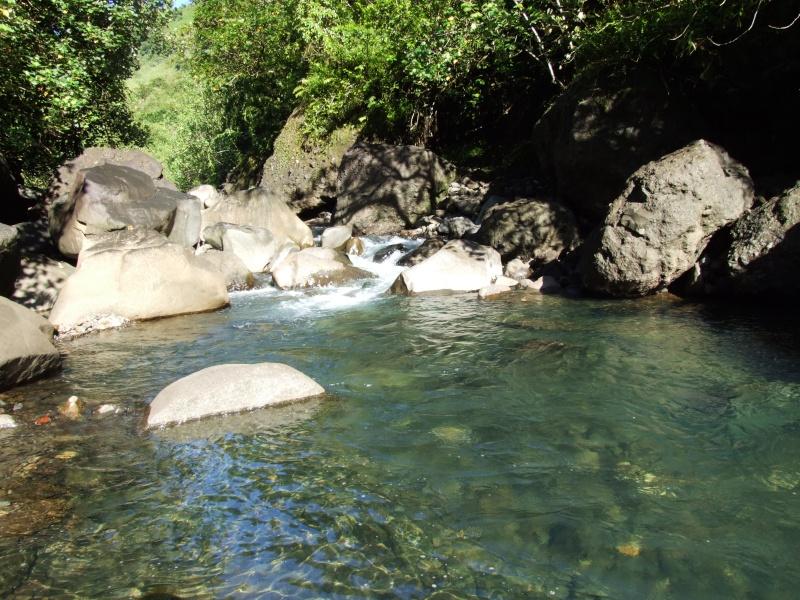 Photos de tahiti, et de ses îles !! Dscf6610