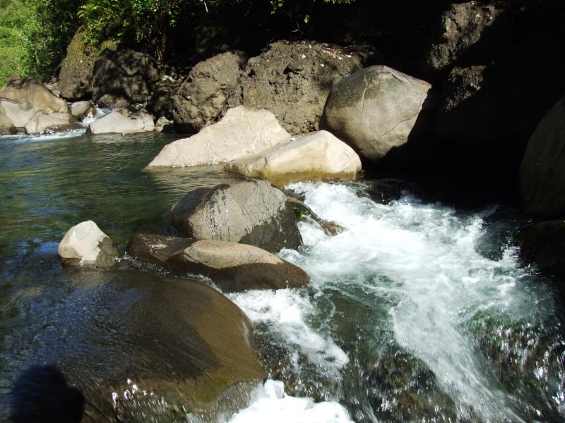 Photos de tahiti, et de ses îles !! Dscf6611