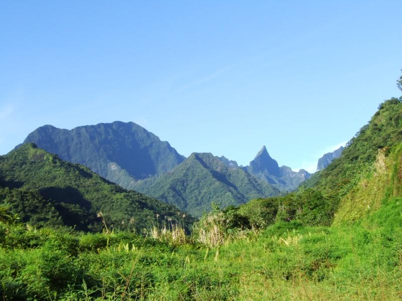 Photos de tahiti, et de ses îles !! Dscf6612
