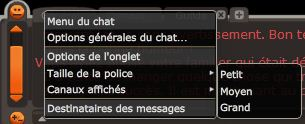 Chat et configuration du chat Chat310