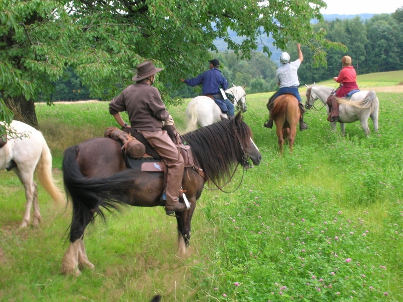 Rando de 5 jours dans les Vosges ...1ères photos ET enfin quelques suivantes Dscn0412