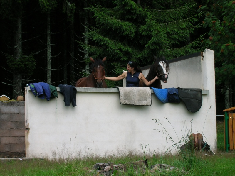Rando de 5 jours dans les Vosges ...1ères photos ET enfin quelques suivantes Dscn0413