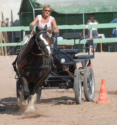 Une photo de vous et votre cheval - Page 7 Jack_f10