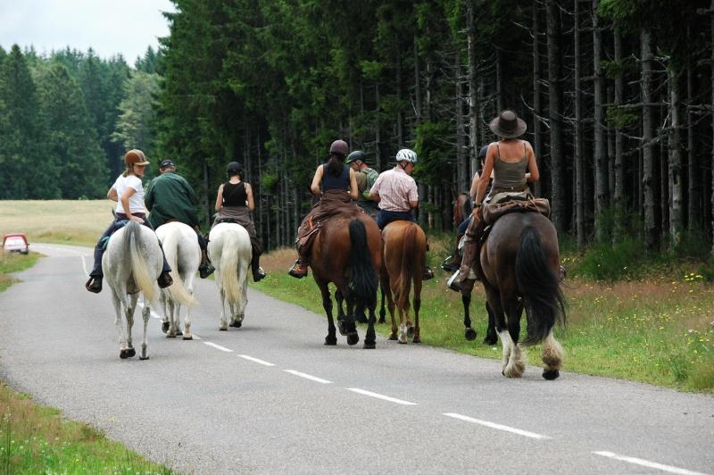 Rando de 5 jours dans les Vosges ...1ères photos ET enfin quelques suivantes Randon12