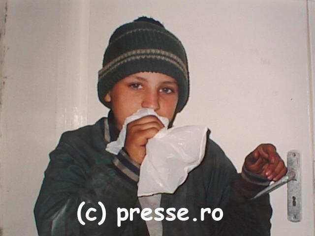Daruind vei dobândi! Presse10