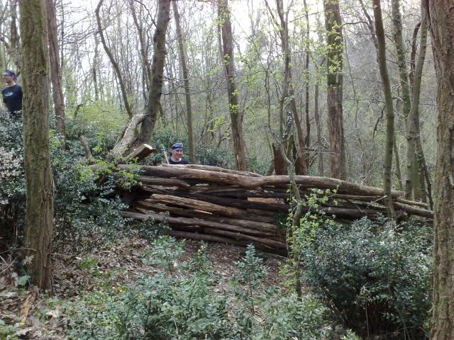 jeudi 2 avril ma cabane au fond du terrain Fort0110