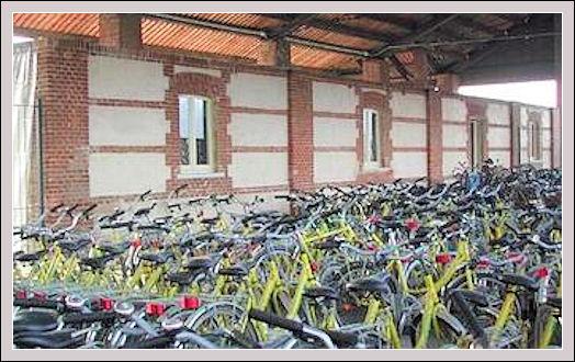Incentivi sulle biciclette Bicicl11