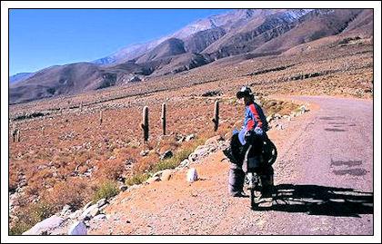 Il giro del mondo in 11 anni su una bicicletta Immagi57