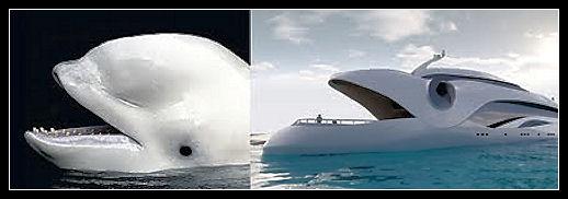 La natura come fonte d'ispirazione Yacht_10