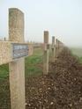 11 novembre 2009 VERDUN (FNAME) Verdun13