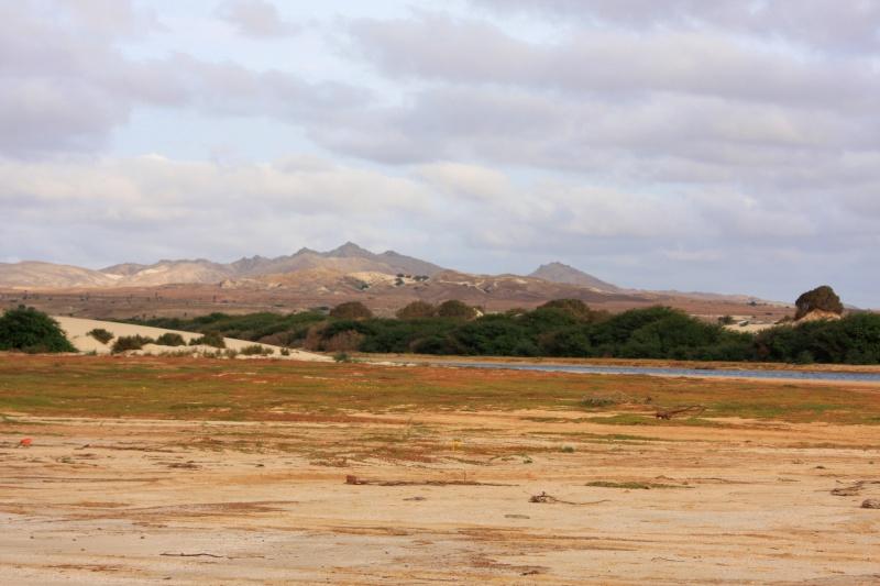 """Petit tour au Cap Vert """"Cabo Verdé"""" - Page 4 Img_4738"""