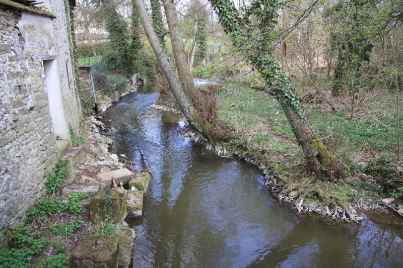 Randonnée des 3 châteaux en Sud Seine et Marne Img_5916