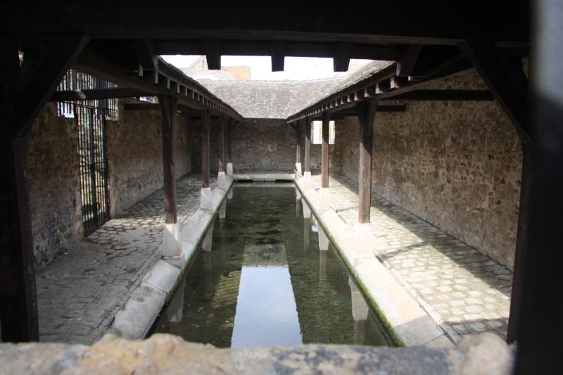 Randonnée des 3 châteaux en Sud Seine et Marne Img_5921