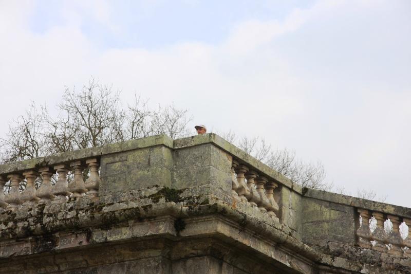 Randonnée des 3 châteaux en Sud Seine et Marne Img_5940