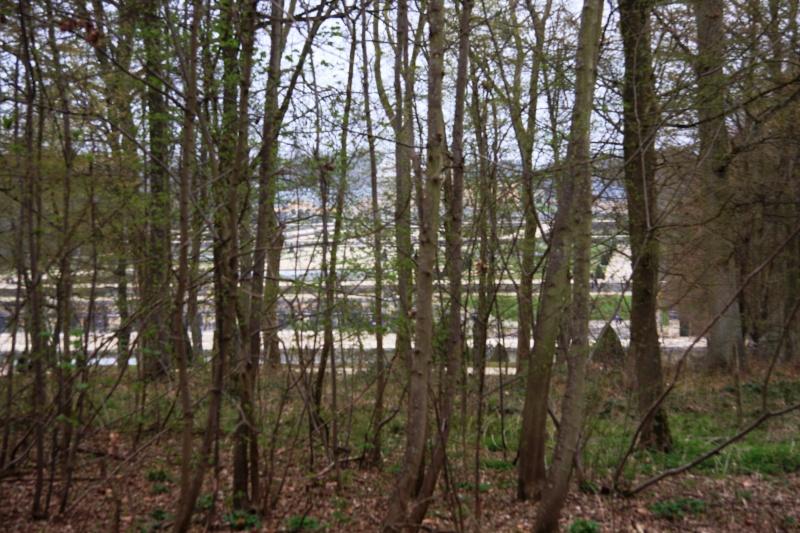 Randonnée des 3 châteaux en Sud Seine et Marne Img_5951