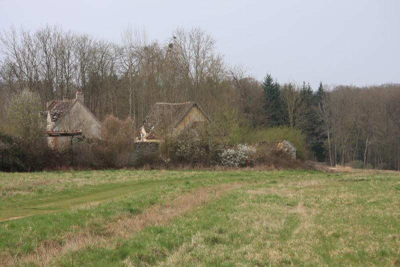 Randonnée des 3 châteaux en Sud Seine et Marne - Page 2 Img_5957
