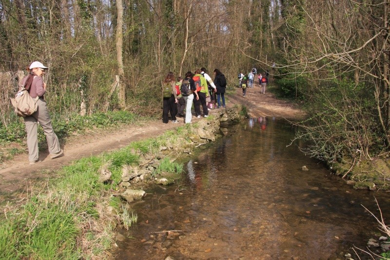 Randonnée des 3 châteaux en Sud Seine et Marne - Page 2 Img_6015