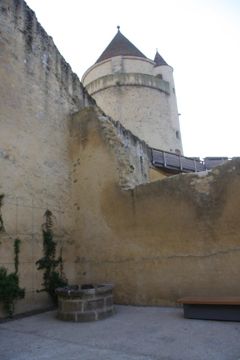 Randonnée des 3 châteaux en Sud Seine et Marne - Page 2 Img_6029