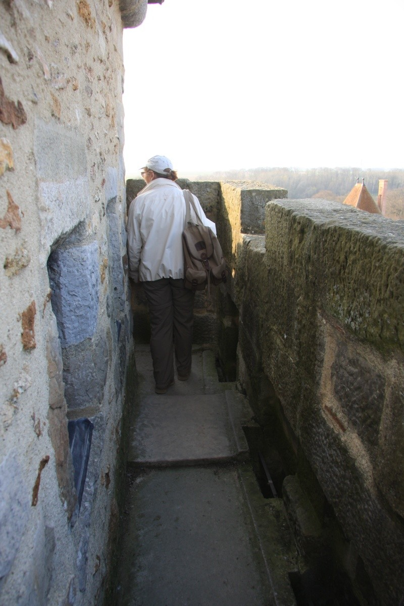 Randonnée des 3 châteaux en Sud Seine et Marne - Page 2 Img_6035