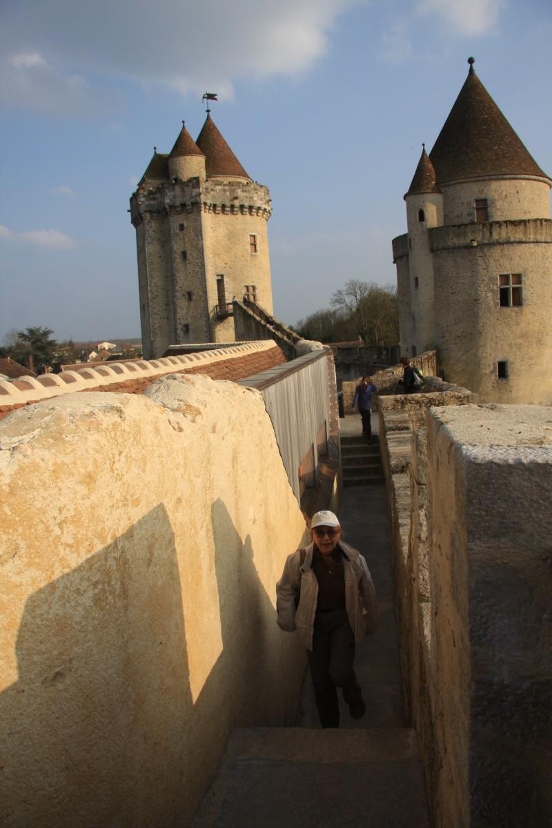 Randonnée des 3 châteaux en Sud Seine et Marne - Page 2 Img_6040