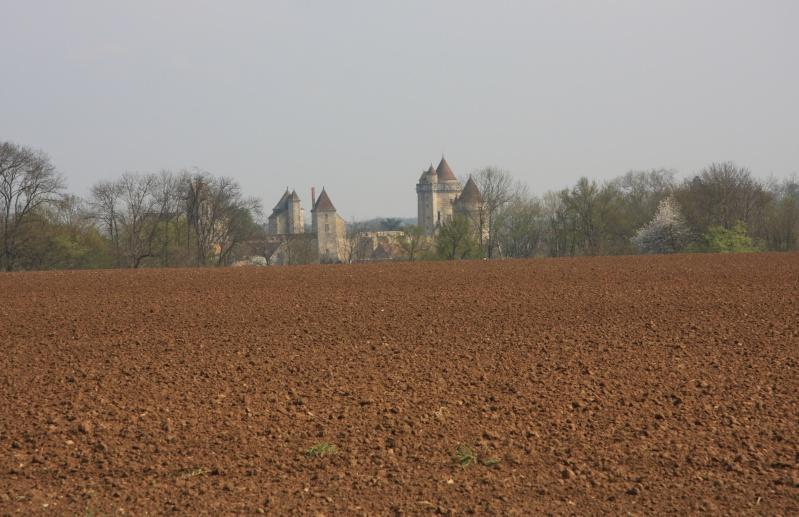 Randonnée des 3 châteaux en Sud Seine et Marne - Page 2 Img_6219