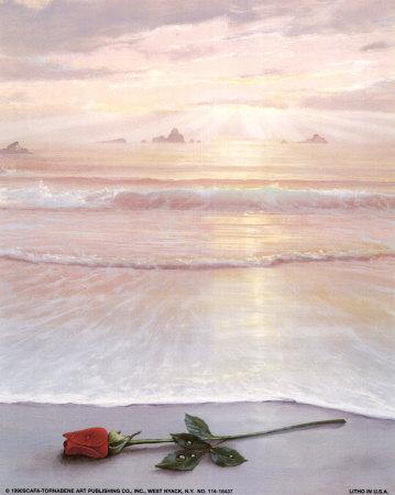 La rose -Thich Nath Hanh 114-1810
