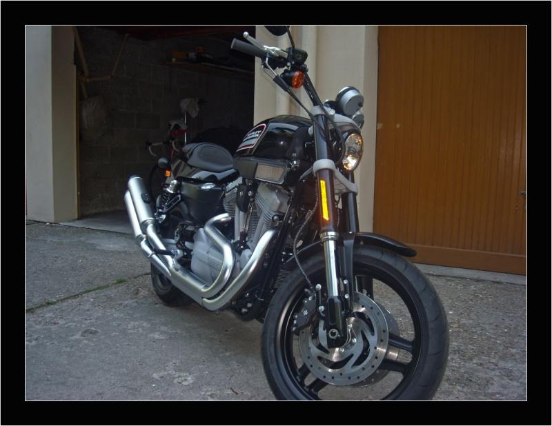 Harley XR 1200 bientot chez moi Harley10