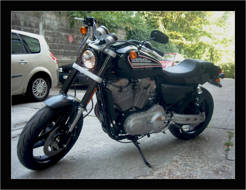 Harley XR 1200 bientot chez moi Harley11