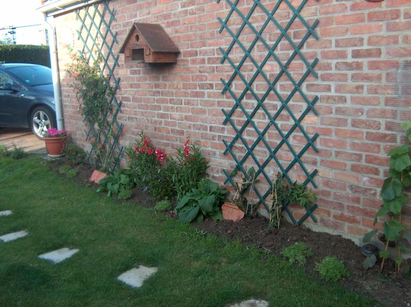 le Jardin D'Ancolies -le Début de l'Aventure- - Page 2 Juin_011