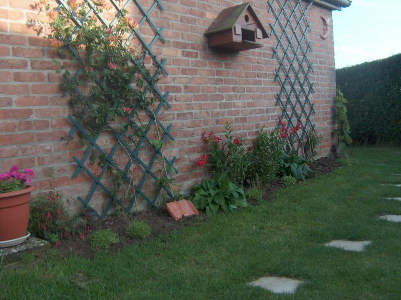 le Jardin D'Ancolies -le Début de l'Aventure- - Page 2 Juin_013
