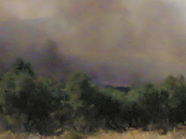 πυρκαγιες... 310