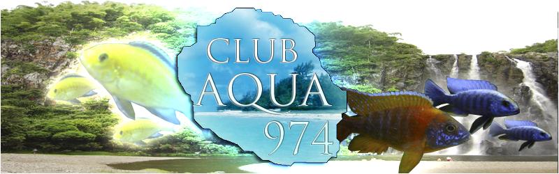 Club d'Aquariophilie de la Réunion 974