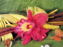 Вязаные цветы 01310