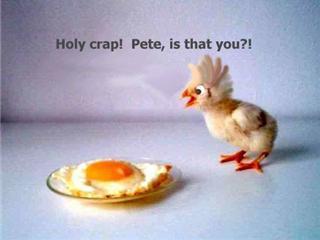 Eure hübschesten Osterhäschen, Fotos, Grüße etc. :-) Chicke10
