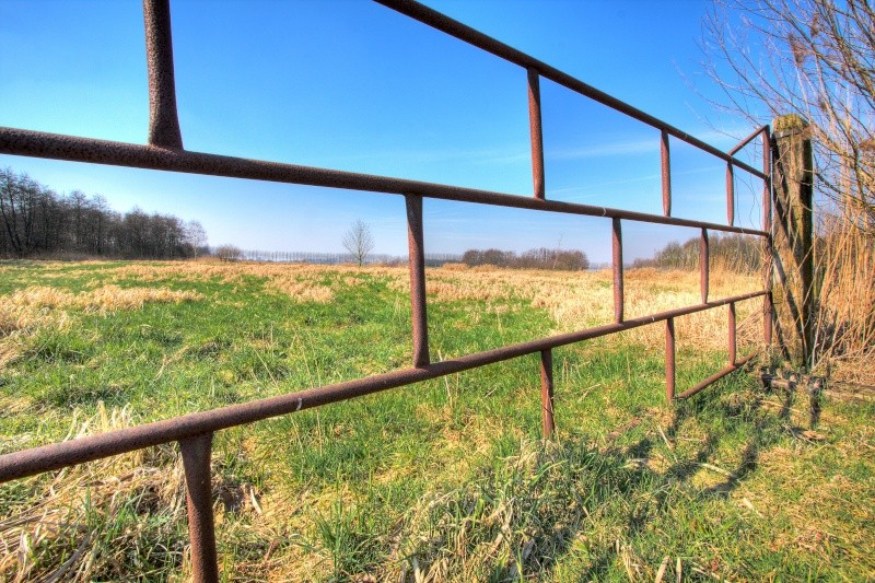 The fence! De_ber11