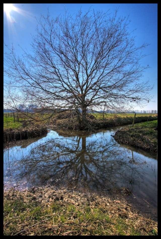 A  place to reflect Kelsdo12